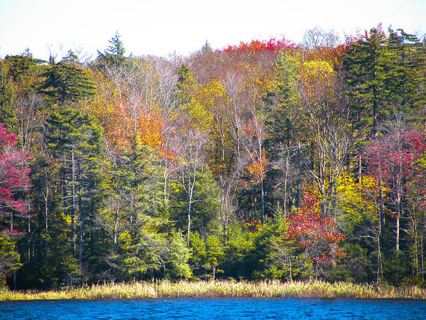 Fulton Chain Of Lakes Photograph - Autumn Color P3 by David Patterson