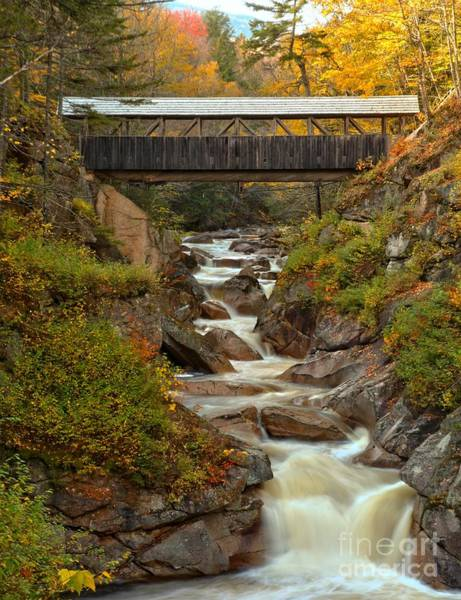 Franconia Notch State Park Photograph - Autumn Colors At Franconia Notch by Adam Jewell