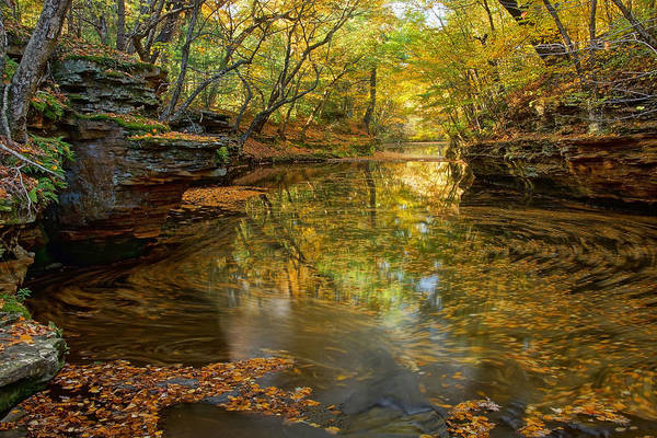 Photograph - Autumn Colors At Skillet Creek by Leda Robertson