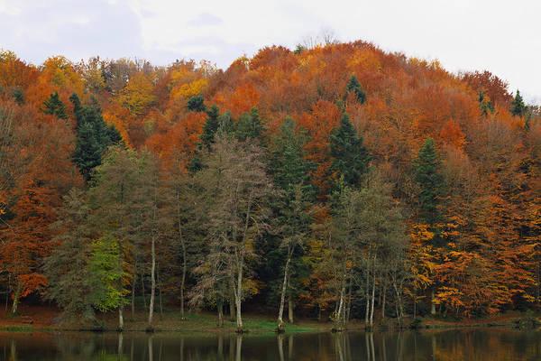 Photograph - Autumn Colors by Ivan Slosar