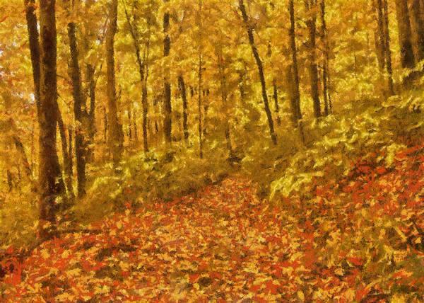 Photograph - Autumn Colour by Charmaine Zoe