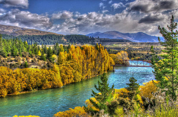 Photograph - Autumn Colours By Clutha River  by Jenny Setchell
