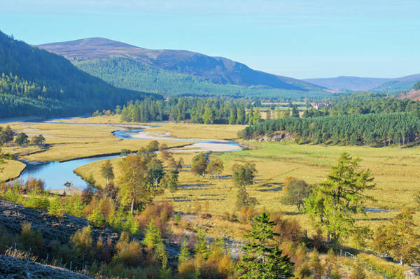 Braemar Photograph - Autumn Colours by Dennis Barnes