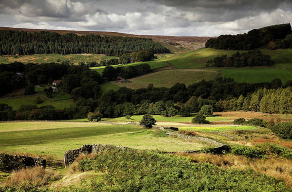 Photograph - Autumn Colours In The North Yorkshire by Dan Kitwood