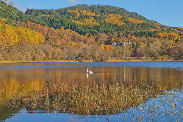 The Trossachs Wall Art - Photograph - Autumn Colours In The Trossachs by Dennis Barnes