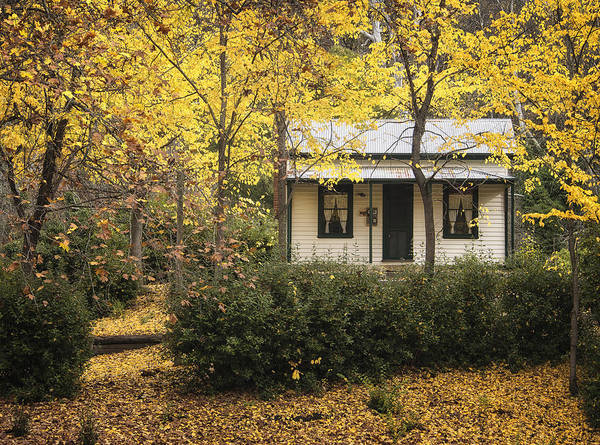 Photograph - Autumn Country Home by Kim Andelkovic