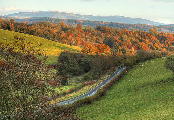 Church Stretton Wall Art - Photograph - Autumn Country Lanes In England by Sarah Broadmeadow-Thomas