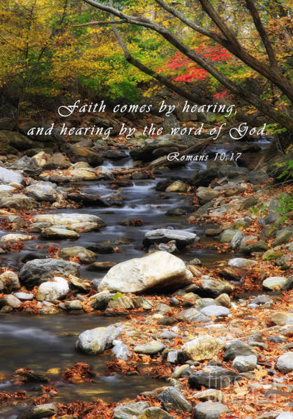 Photograph - Autumn Creek With Romans Scripture by Jill Lang