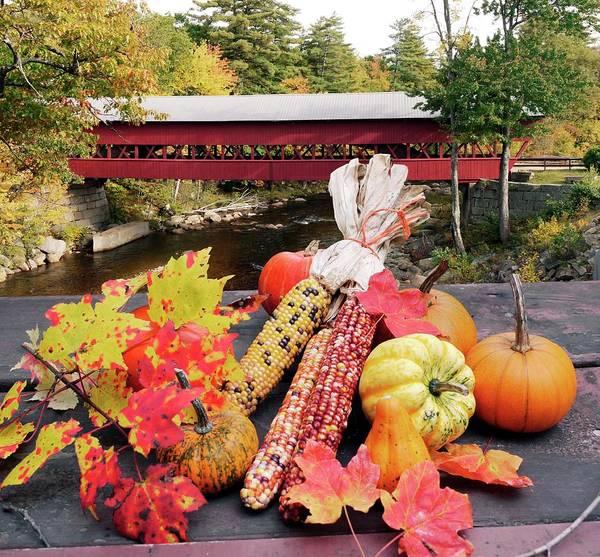 Cucurbita Wall Art - Photograph - Autumn Crops And Covered Bridge by Tony Craddock/science Photo Library