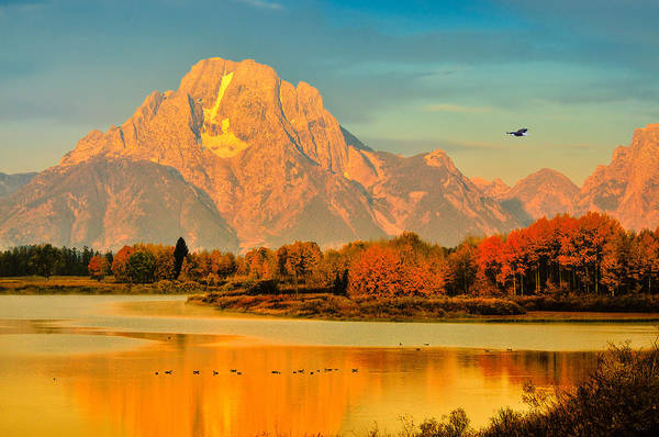 Oxbow Park Photograph - Autumn Dawn At Oxbow Bend by Greg Norrell