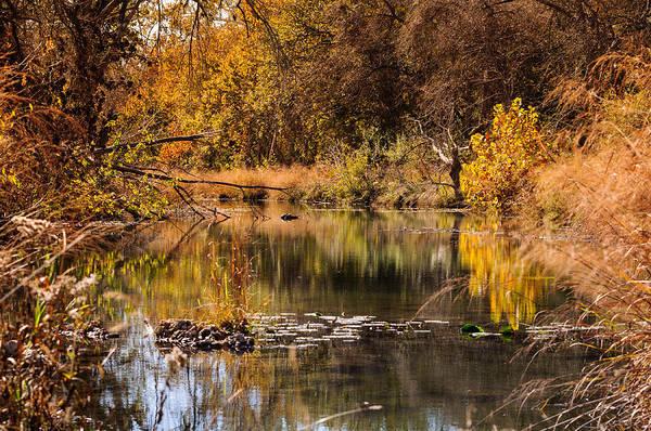 Photograph - Autumn Day by John Johnson