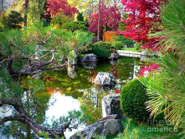 Photograph - Autumn Dream by Carol Groenen