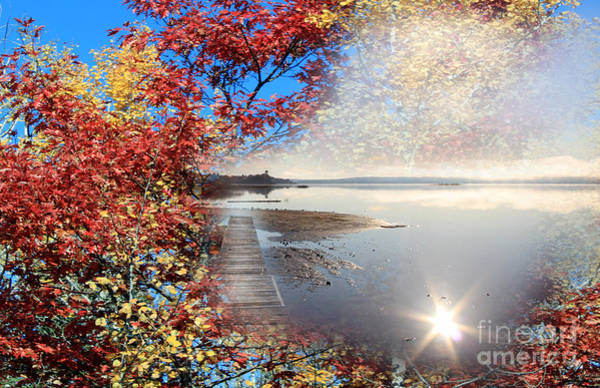Photograph - Autumn Dreaming by Cathy Beharriell