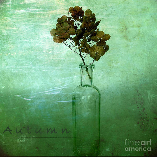 Iphoneography Wall Art - Photograph - Autumn by Elena Nosyreva