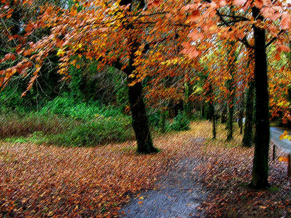 Digital Art - Autumn Entrance To Muckross House Killarney by James Truett