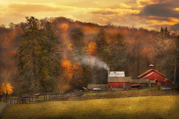 Photograph - Autumn - Farm - Morristown Nj - Charming Farming by Mike Savad