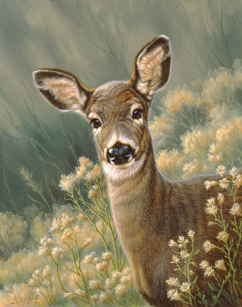 Wall Art - Painting - Autumn Fawn-blacktail by Paul Krapf