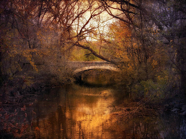 Photograph - Autumn Finale by Jessica Jenney
