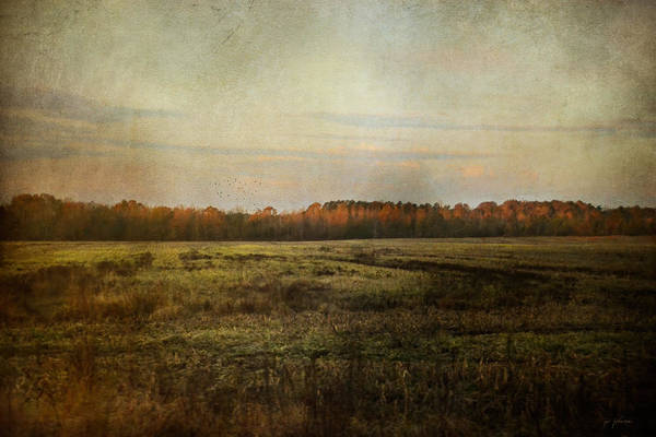 Photograph - Autumn Flame by Jai Johnson