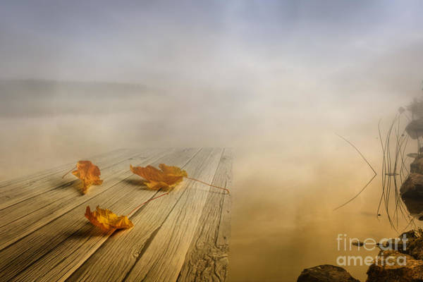 Leave Photograph - Autumn Fog by Veikko Suikkanen