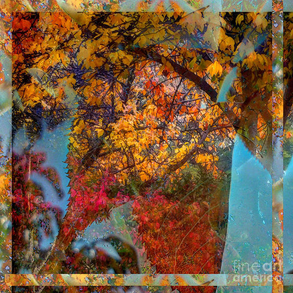 Photograph - Autumn Fusion 5 by Jeff Breiman