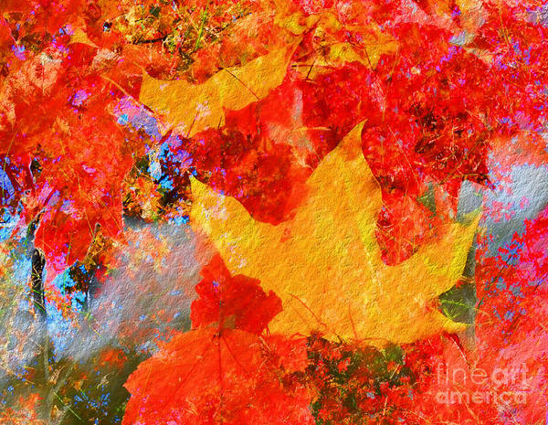 Photograph - Autumn Fusion 6 by Jeff Breiman