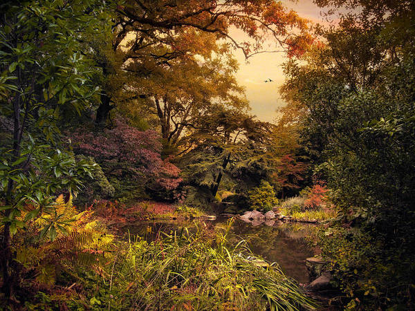 Earth Tones Photograph - Autumn Garden Sunset by Jessica Jenney