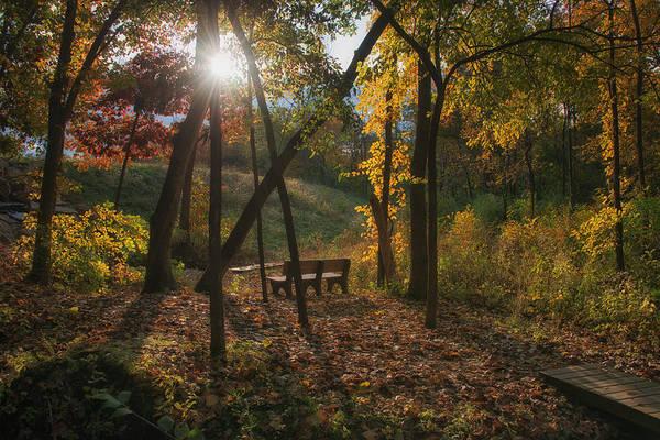 Photograph - Autumn Glory by Darlene Bushue