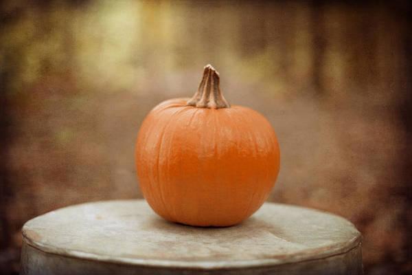 Fall Photograph - Autumn Harvest by Kim Fearheiley