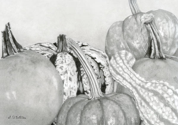 Hand Drawn Drawing - Autumn Harvest by Sarah Batalka