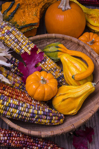 Indian Corn Photograph - Autumn Harvest Still Life by Garry Gay