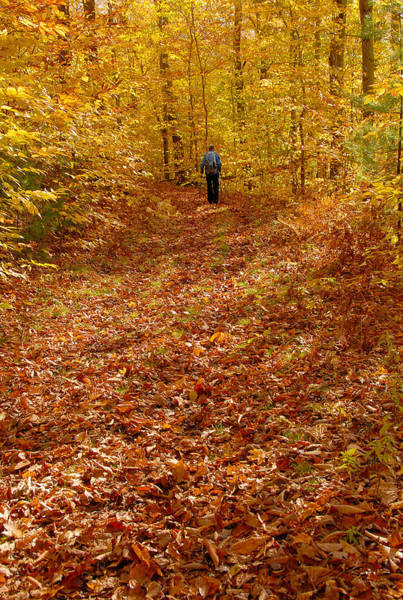 Photograph - Autumn Hike by Ken Stampfer