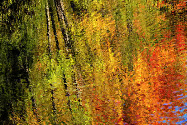 Marquette Photograph - Autumn Hues Reflect Into The Dead by Chuck Haney