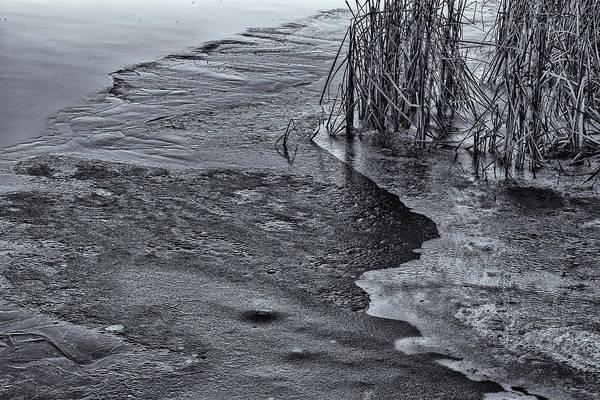 Photograph - Autumn Ice by Tom Singleton