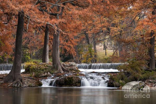 Photograph - Autumn Idyll by Bob Phillips