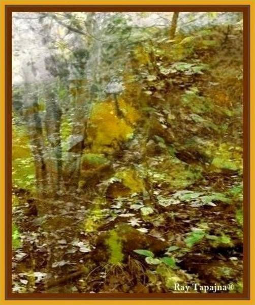 Mixed Media - Autumn Impressions by Ray Tapajna