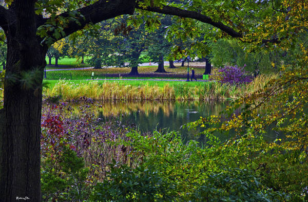 Wall Art - Photograph - Autumn In Central Park 2 - Nyc by Madeline Ellis