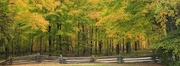Photograph - Autumn In Door County by Adam Romanowicz