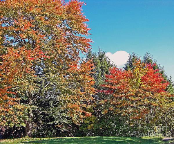 Ohio Autumn In Full Color Art Print