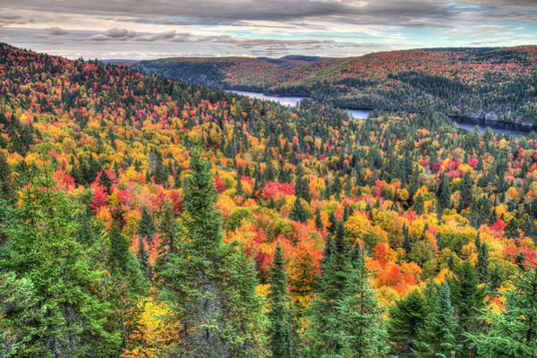 Photograph - Autumn In La Mauricie National Park Canada by Pierre Leclerc Photography