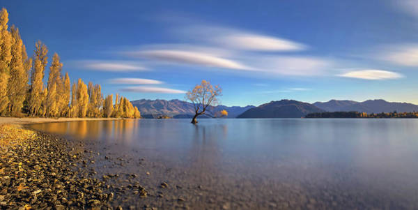 Lake Shore Wall Art - Photograph - Autumn In Lake Wanaka by Hua Zhu