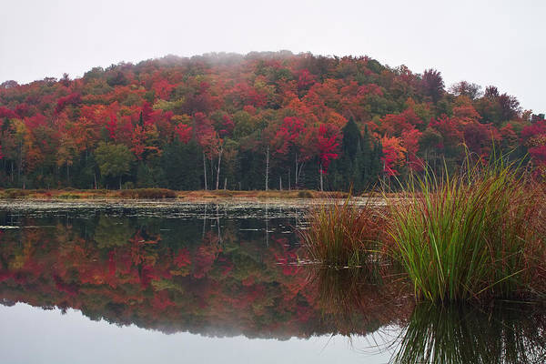 Photograph - Autumn In Northern Vermont by John Vose