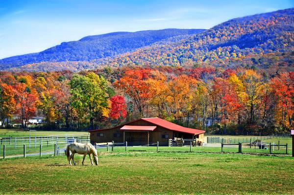 Autumn In Rural Virginia  Art Print