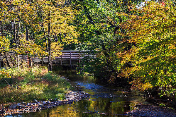 Photograph - Autumn In Stillwater by Eleanor Abramson