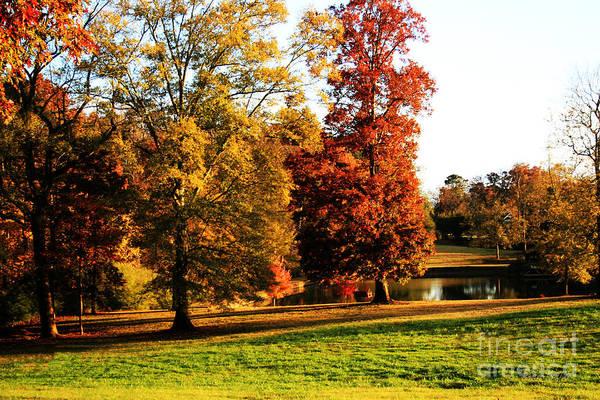 Autumn In The Air... Art Print by Jinx Farmer