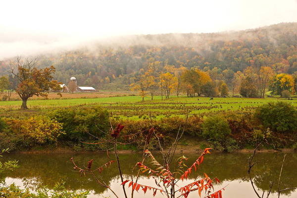 Photograph - Autumn In The Butternut Valley-six by Byron Varvarigos