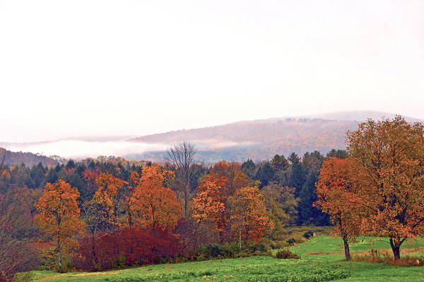 Photograph - Autumn In The Butternut Valley-three by Byron Varvarigos