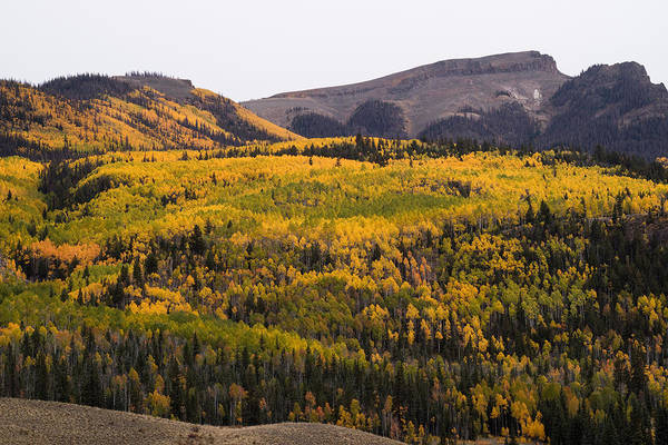 Fourteener Photograph - Autumn In The Colorado Mountains by Greg Ochocki