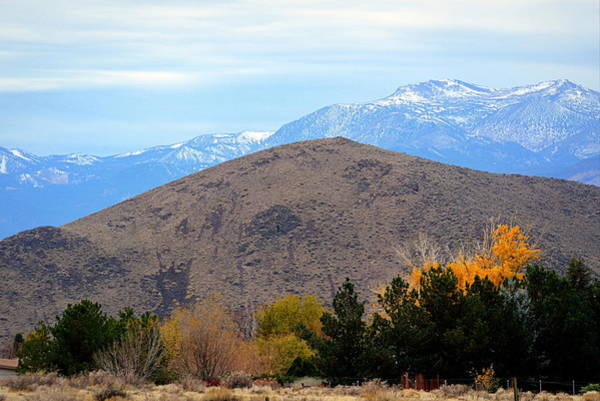 Photograph - Autumn In The High Desert by AJ  Schibig