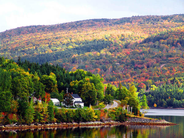 Cabot Trail Photograph - Autumn In The Highlands by George Cousins